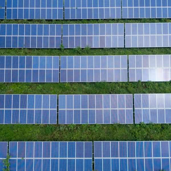 Which solar panel is suitable to guarantee the financial viability of the photovoltaic installation?